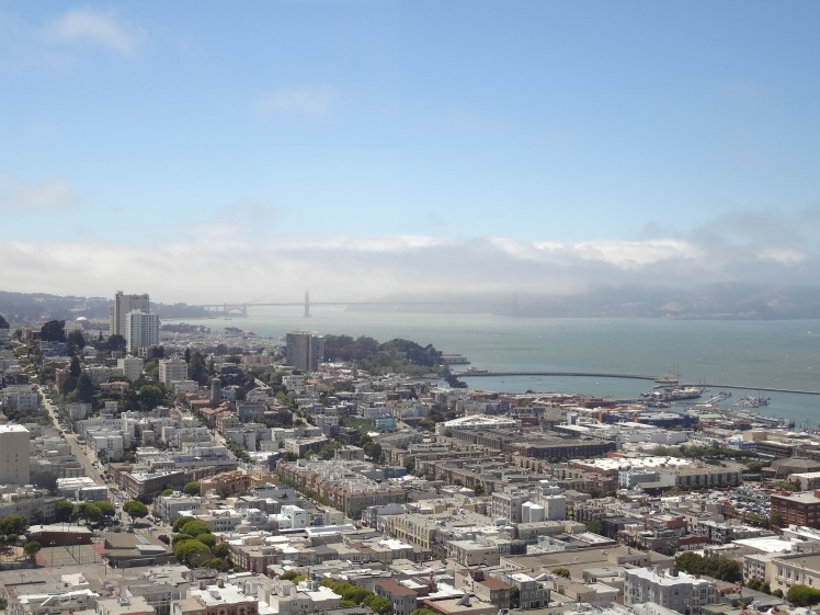 San Francisco Coit Tower 3